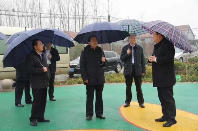 济宁市委书记马平昌到大安镇视察调研美丽乡村建设工作