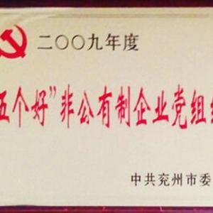 """""""五个好""""非公有制企业党组织"""